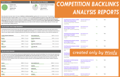 Competitor Backlinks Spy Report